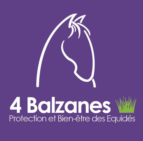 4 BALZANES  - Boutique en ligne