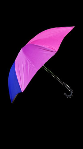 Umbrella/Parasol (in-person sales/pickup only)